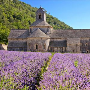 Senanque Abbey, Provence, France
